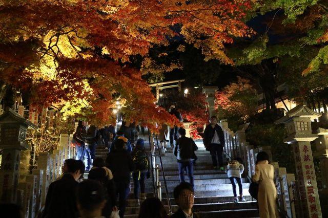 紅葉の阿夫利神社