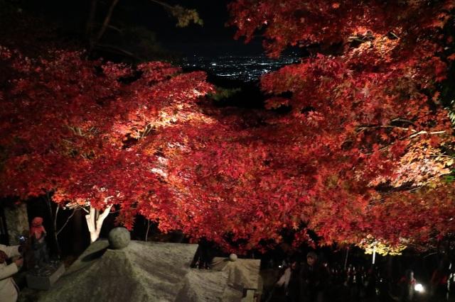 夜の紅葉藍段