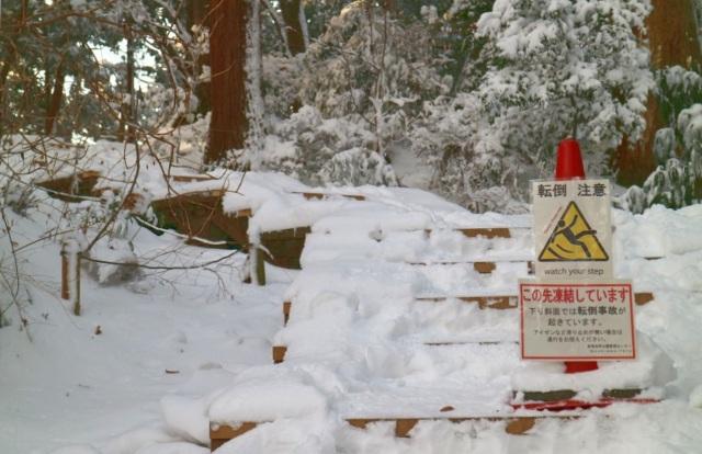 雪の登山道